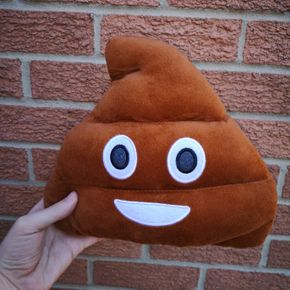 Smiley turd prop available at WDN Photo Booth & Disco
